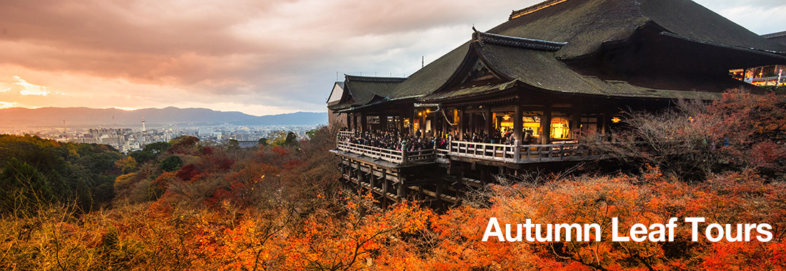 See the spectacular autumn colours of Japan