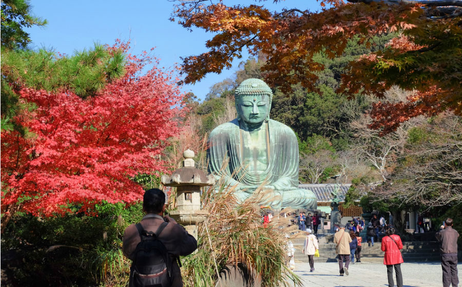 The Great Buddha, autumn