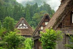 Traditional Thatched Roofing